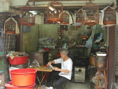 Hong Kong 2011 - image 7